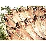 あじの干物 10枚セット 伊豆の干物 伊東 長さ約20cm 幅約9cm 国産 トロ 鯵 アジ