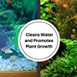 Aquarium-Plant-Growth-And-pH-Water-Balance-Kit-845-Oz-Each-Bottle-Aquatic-Fertilizer-And-Healthy-Water-Treatment-Conditioner-For-Freshwater-Fish-Tanks-Reduces-Potassium-Nitrate-And-Phosphates