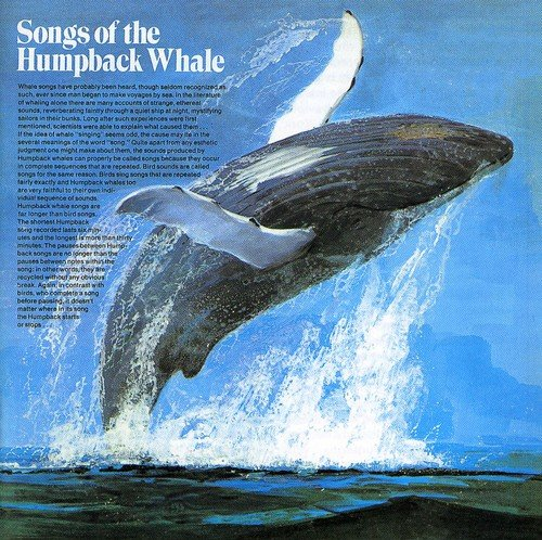 Songs of the Humpback Whale by Bgo - Beat Goes on