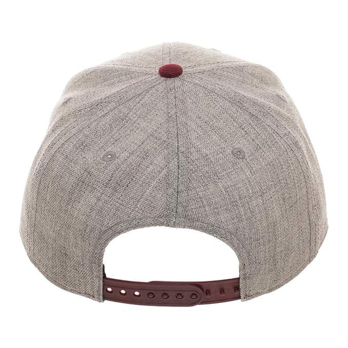new styles f8ce4 db773 Amazon.com  DC Comics The Flash Curved Bill Snapback Hat  Clothing