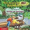 Gefahr am Amazonas (Das magische Baumhaus 6)