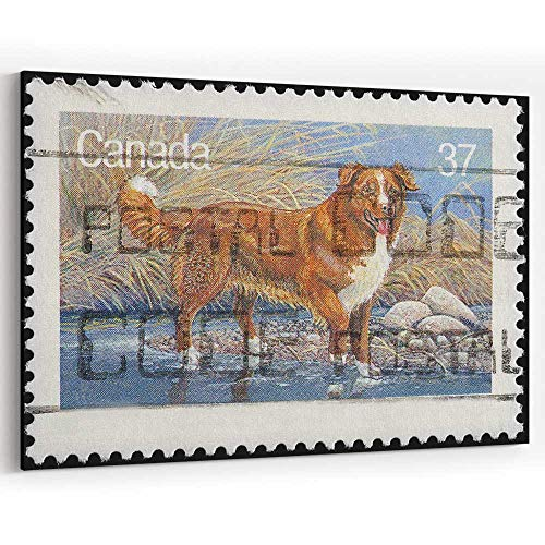 Nova Scotia Duck Tolling Retriever Vintage Postage Stamp Canvas Art Wall Dector for Home Decor