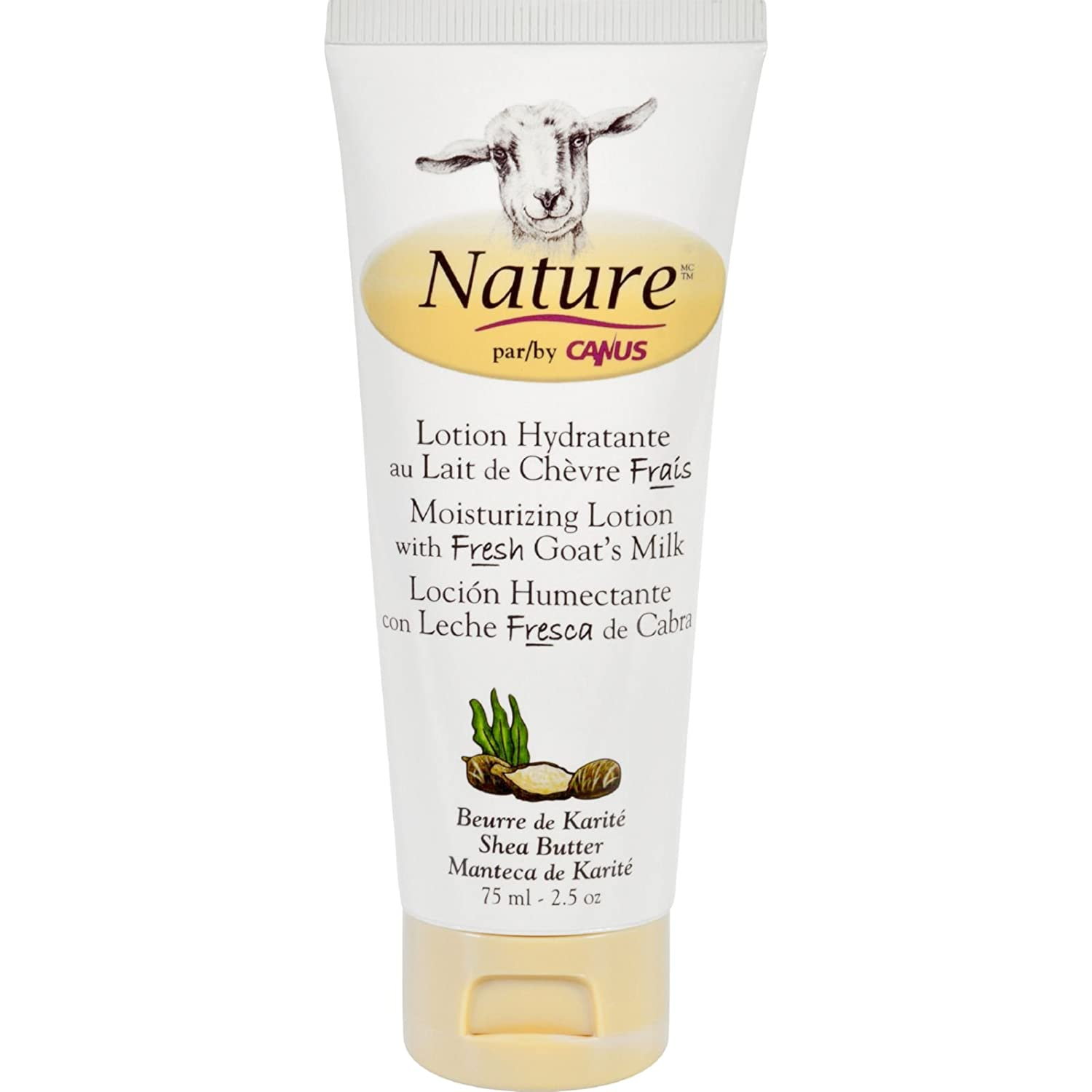 Amazon.com : Nature By Canus Lotion - Goats Milk - Nature - Shea Butter - 2.5 oz : Beauty