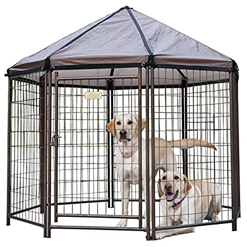 Outdoor Dog Kennels for Large Dogs: Amazon.com