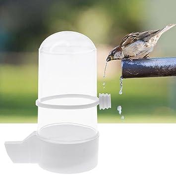 Lazder - Jaula para pájaros, Bebedero de Agua, Semillas y pozos ...