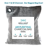 Brilliant Evolution BRRC206 Natural Bamboo Charcoal Large Air Purifying Bag, 550 Grams (1.2 lbs) Of 100% Natural Bamboo Charcoal, Air Freshener That Eliminates Odors and Absorbs Moisture
