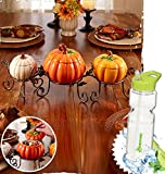 Gift Included- Table or Countertop 4-Pc. Ceramic Pumpkin Fall Season Centerpiece Set W/ Removable Lids + FREE Bonus Water Bottle by Homecricket