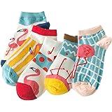 Women's 5 Pairs No Show Low Cut Socks Cotton Ankle Sock