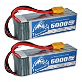 YoWoo 2 Packs 6000mAh 22.2V 6S RC LiPo Battery 50C-100C XT90 for Align 7.2 Yak 54 T-REX Mikado LOGO DJI Airplane Quadcopter Helicopter Hobby (6.1 x 1.89 x 2.1 in,1.9lb )