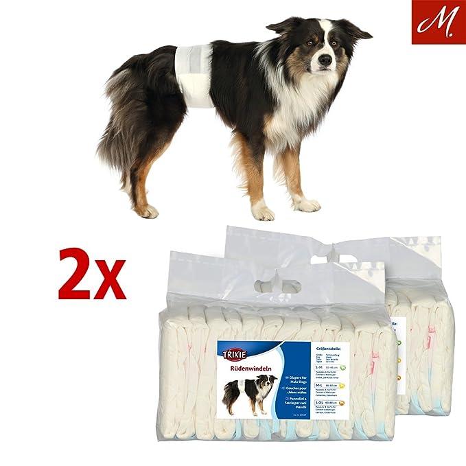 Trixie Pañales para Perro Macho, M-L, 46-60 cm, 12 uds: Amazon.es: Productos para mascotas