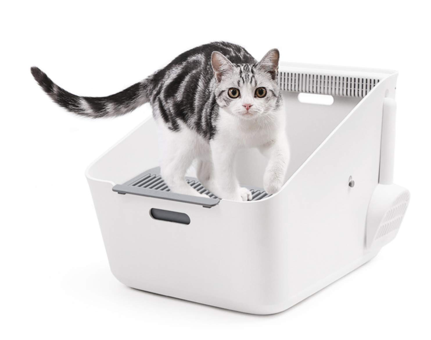 Domie Cat Litter Box, Self Cleaning Litter Box by PETKIT by Domie