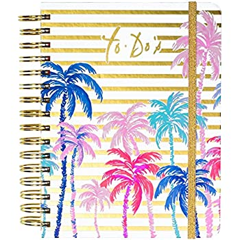 Amazon.com : Lilly Pulitzer 17 month Large Agenda 2017-2018 ...