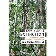 Decolonizing Extinction: The Work of Care in Orangutan Rehabilitation