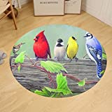 Gzhihine Custom round floor mat Manual Climaweave IndoorOutdoor Decorative Throw Pillow 18 X 13- Birds on a Line III