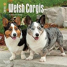Welsh Corgis 2018 7 x 7 Inch Monthly Mini Wall Calendar, Animals Dog Breeds (Multilingual Edition)