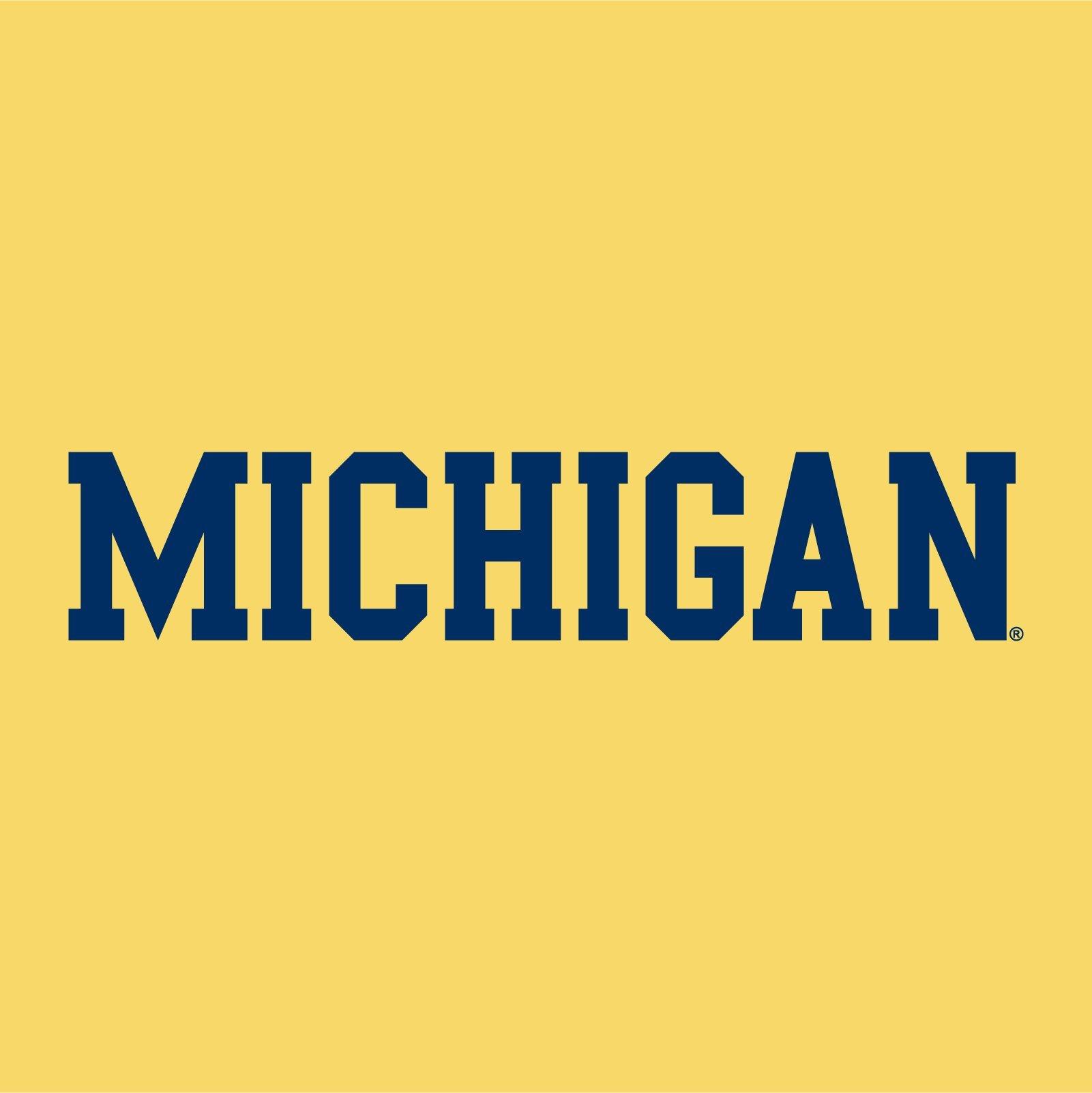Michigan Wolverines Basic Block T-Shirt - Large - Maize