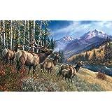 Elk Anthem a 1000-Piece Jigsaw Puzzle by Sunsout Inc.