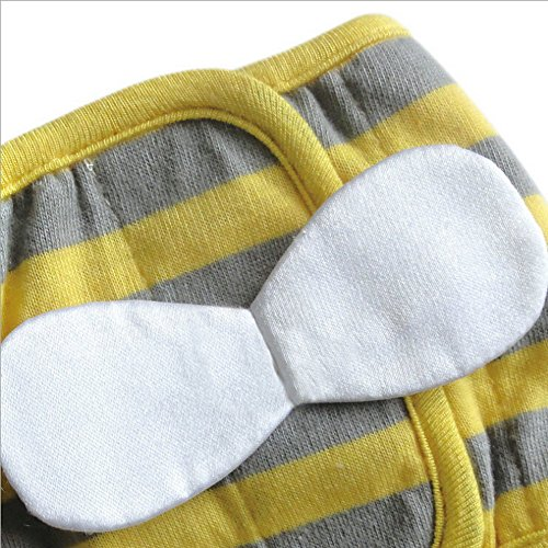 Gold Wing Bee Pattern Dog Diaper Belly Band, Medium