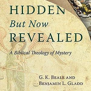 Hidden But Now Revealed Audiobook