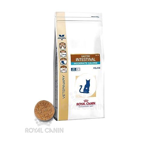 royal canin gastro intestinal gatto  ROYAL CANIN Gastro Intestinal Moderate Calorie Secco Gatto kg. 2 ...