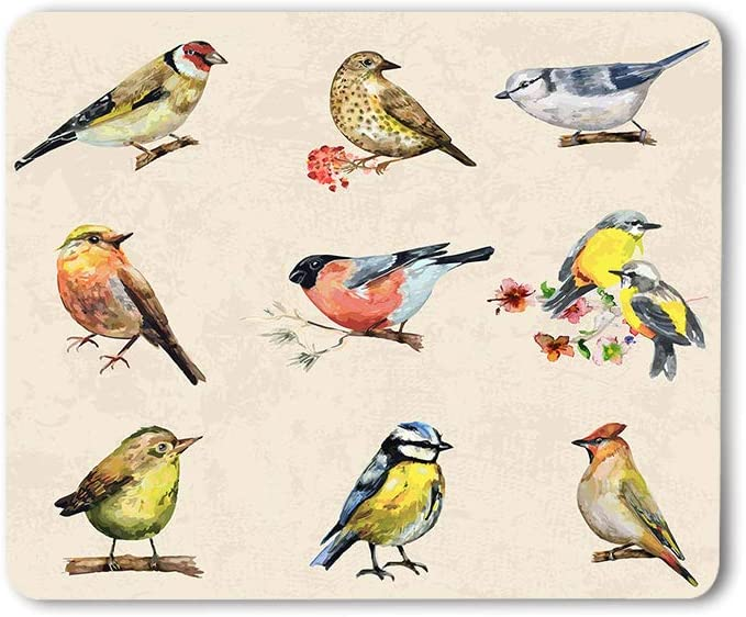Moslion Birds Mouse Pad Watercolor Painting Flower Animal Small Branch Nature Art Beautiful Gaming Mouse Mat Non-Slip Rubber Base Thick Mousepad for Laptop Computer PC 9.5x7.9 Inch