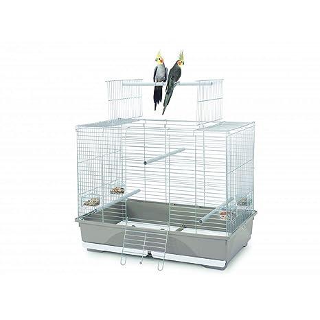 Imac 5-11001 Jaula Pájaros Wilma, 80.5 x 49 x 65.5 cm: Amazon.es ...