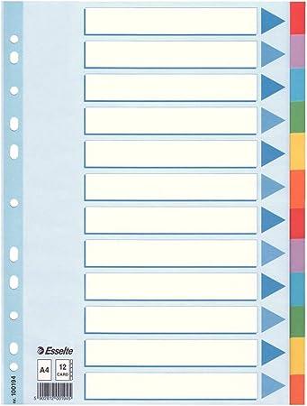10 Blatt Karton farbig Esselte Leitz Kartonregister Blanko A4