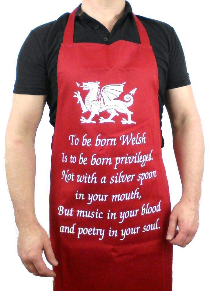 Rugby Football Flag Wales Welsh Since 1969 Mens Funny 50th Birthday T-Shirt
