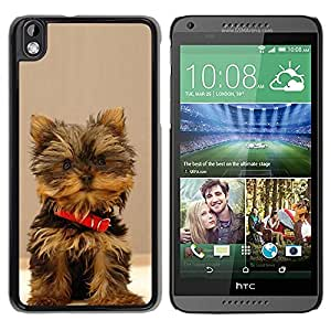 Be Good Phone Accessory // Dura Cáscara cubierta Protectora Caso Carcasa Funda de Protección para HTC DESIRE 816 // Yorkshire Terrier Small Dog Puppy