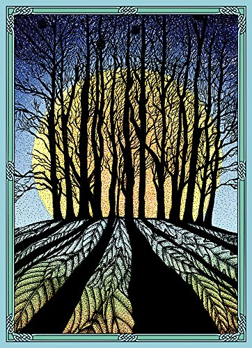 "Tree-Free Greetings Solstice Cards and Envelopes, Set of 10, 5 x 7"", Winter Solstice (HB93353)"