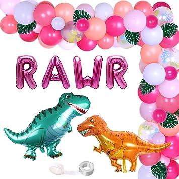 Dinosaur Baby Girl Boy Balloon Decor Shower Kit