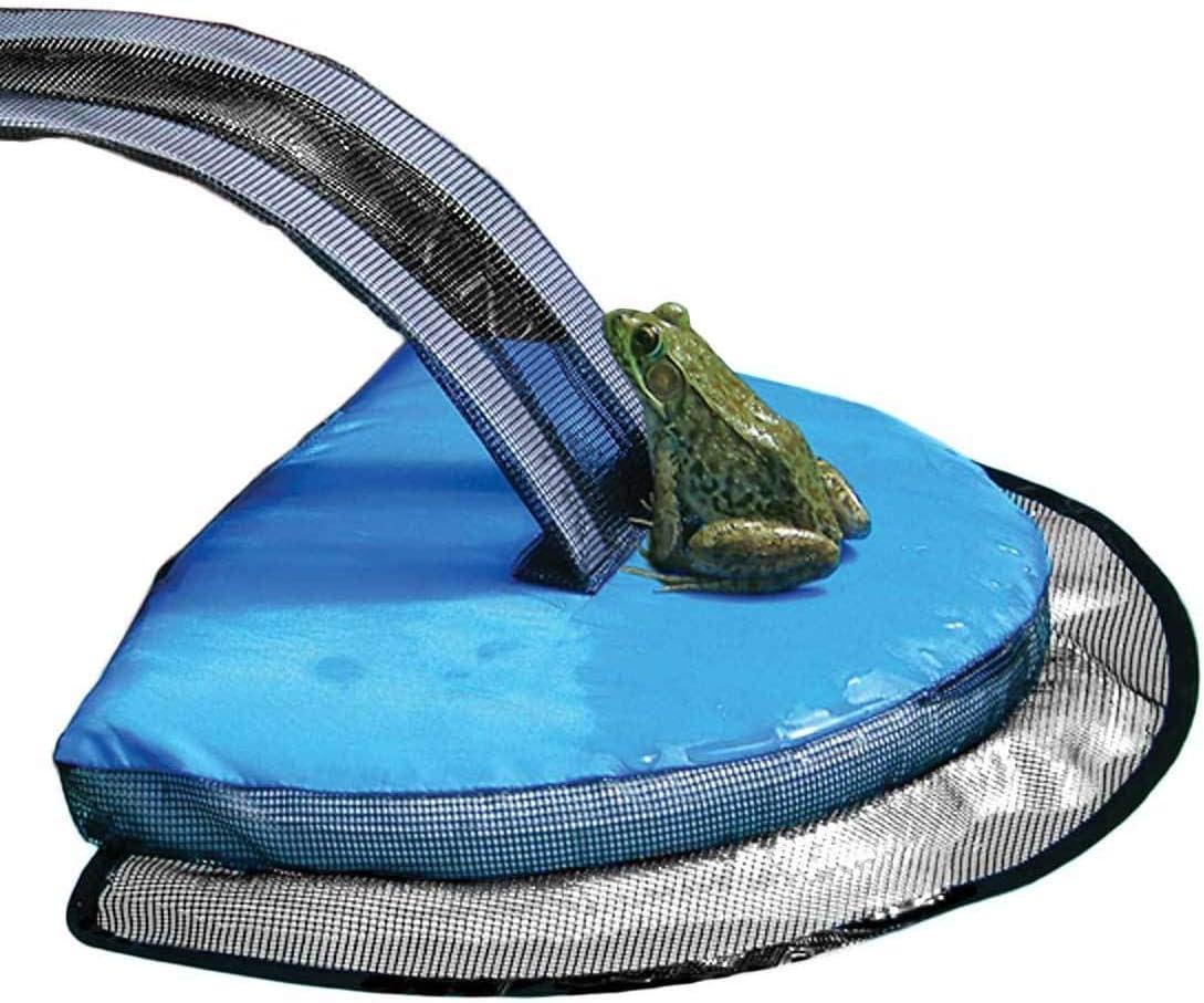 FrogLog: Animal Saving Escape Ramp for Pool