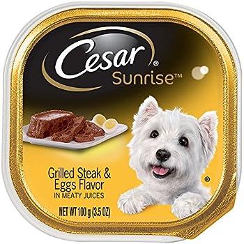 how to serve dog food