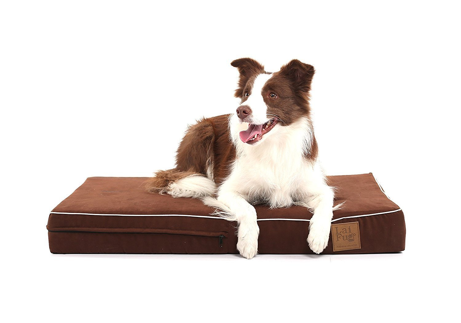 Amazon.com: Laifug Orthopedic Memory Foam Pet/Dog Bed (Medium34x22x4, Chocolate) with Durable Water Proof Liner and Removable Designer Washable Cover: ...