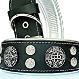Bestia ''Hektor Genuine Leather Dog Collar, Large Breeds, Cane Corso, Rottweiler, Boxer, Bullmastiff, Dogo, 100% Leather, Studded, L- XXL Size, 2.5 Inch Wide. Padded. Europe`s Fnest Dog Gear!