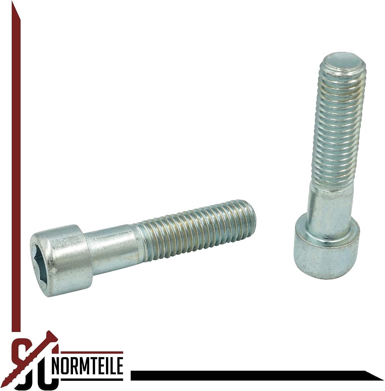 100 St/ück DIN 912 // ISO 4762 Zylinderschrauben mit ISK verzinkt 8.8 SC912 Stahl galv M3x5 mm