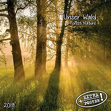 Calendario 2019 broca naturaleza - Nature Zen - Montaña - de ...