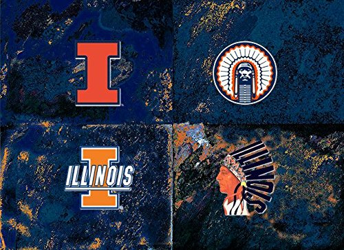 Worhol's Illinois University Logo -Illinios University - Chief Illiniwek ()