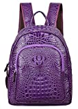PIJUSHI Women Leather Backpack Crocodile School Backpack Casual Rucksack (G9935 violet)