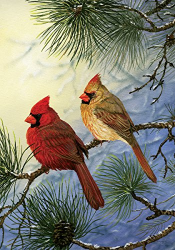 Cardinal Couple STANDARD Decorative Double
