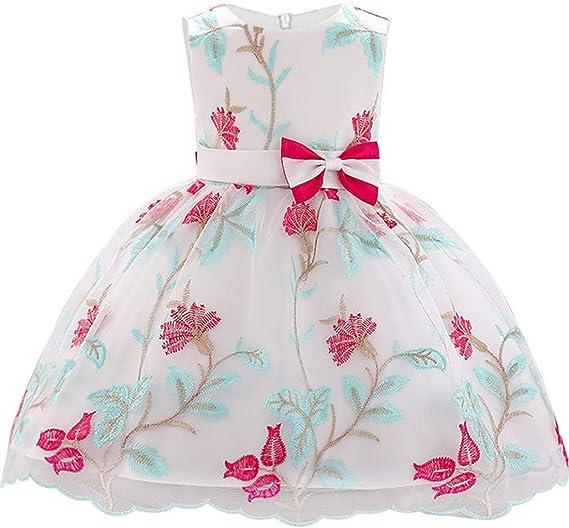 Amazon.com: LLQKJOH vestido para bebé recién nacido 0-24 ...