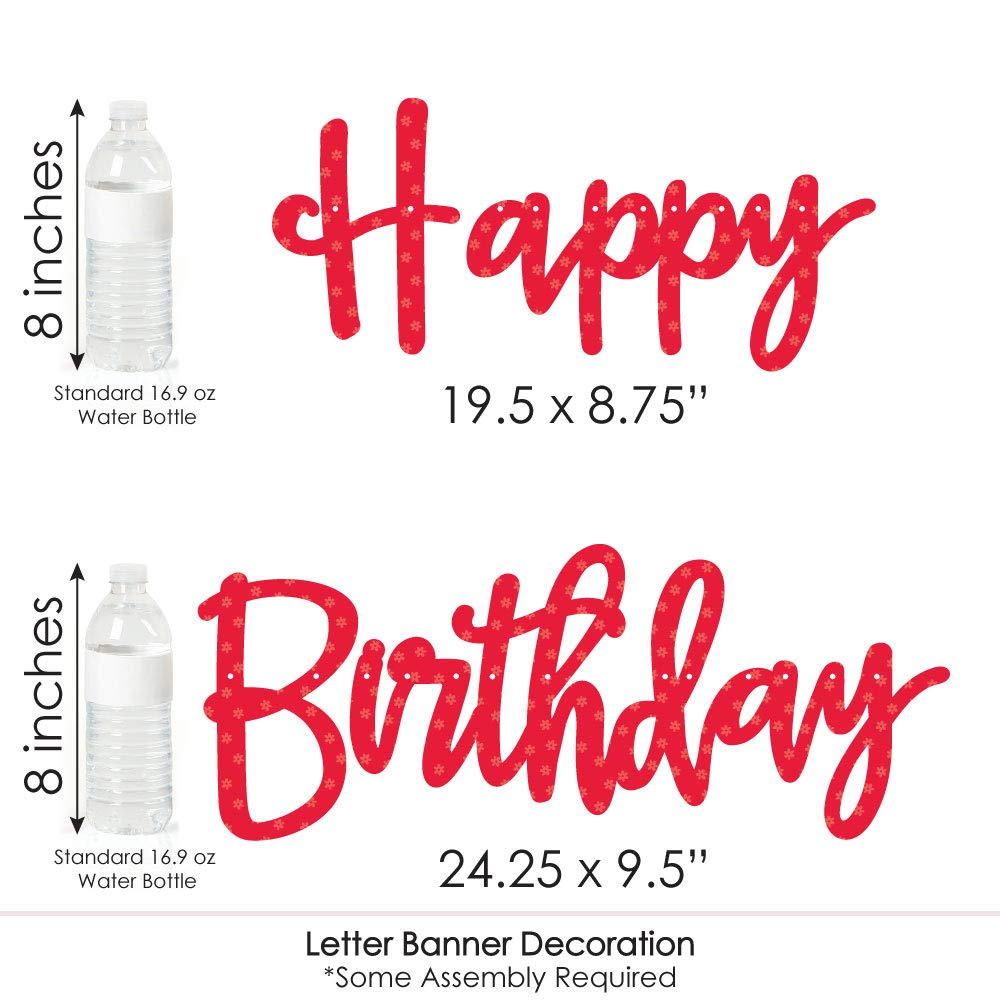 36 Banner Cutouts and Happy Birthday Banner Letters Birthday Party Letter Banner Decoration Big Dot of Happiness Happy Little Ladybug