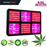 LED Grow Light Full Spectrum for Indoor Plants Veg and Flower Switches 12-band UV&IR MaxBloom 750W M750 LED Grow Light Special for Marijuana Cannabis For Sale