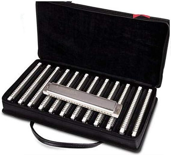 PNLD Armónica de 24 agujeros de 12 tonos para adultos, armónica ...
