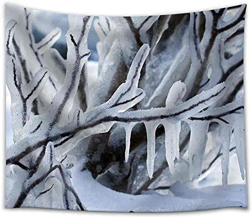 wall26 – Beautiful Winter Frost Branch Closeup – Fabric Wall Tapestry Home Decor – 68×80 inches