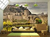 wall26 - Toledo, Spain - Removable Wall Mural | Self-adhesive Large Wallpaper - 100x144 inches