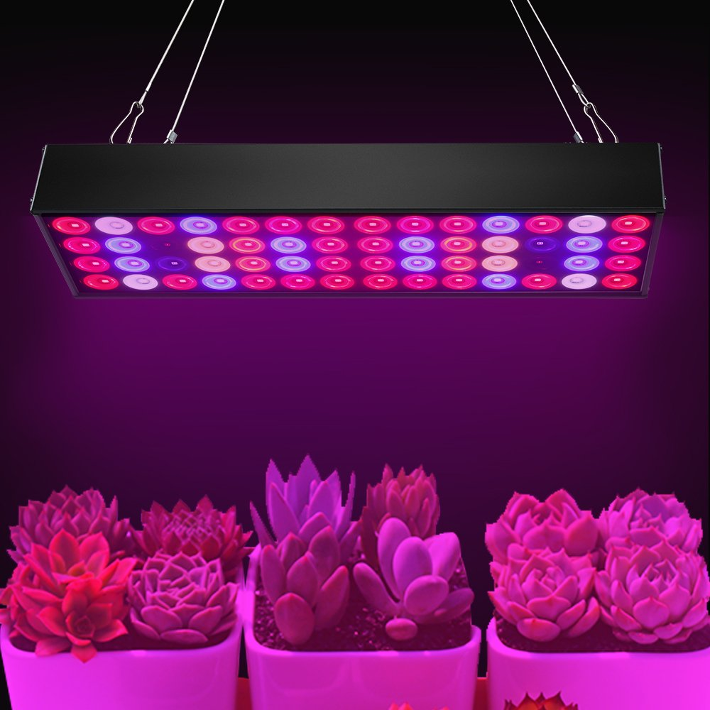36W Full Spectrum LED Grow Light with UV & IR,No Noise Led Grow Light Bulb with Daisy Chain for Indoor Plants.Cool When Running,Energy-efficient,Works for All Stages by Antievening (Image #8)