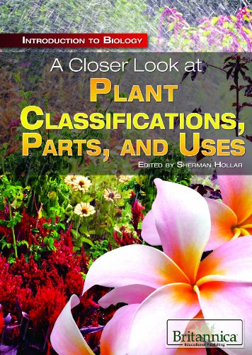 A Closer Look at Plant Classifications, Parts, and Uses (Introduction to Biology)