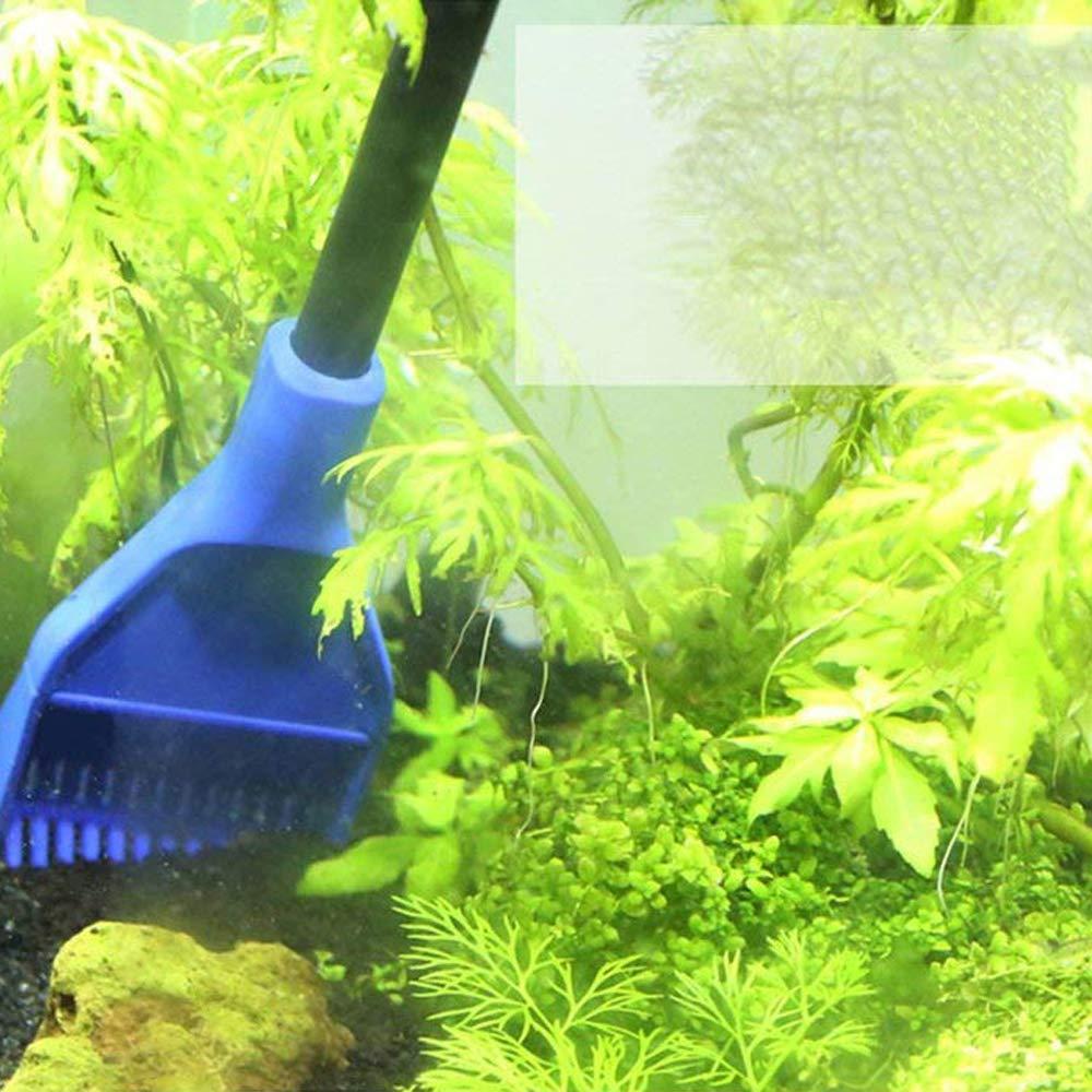 CTlite - Kit de Limpieza 5 en 1 para Acuario con Red de Cuchara de Pesca, rascador de Algas, Tenedor de Planta, Esponja Limpia, Juego de Herramientas: ...