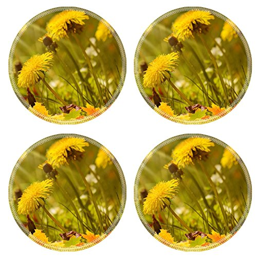 liili-natural-rubber-round-coasters-image-id-31922819-autumn-meadow